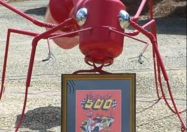 Fire Ant Festival
